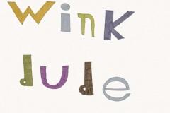 Wink dude